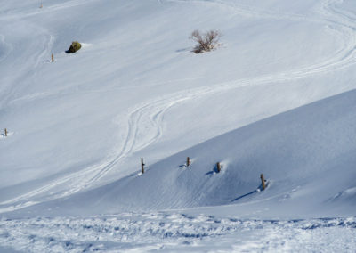 champ de neige à Montaimont
